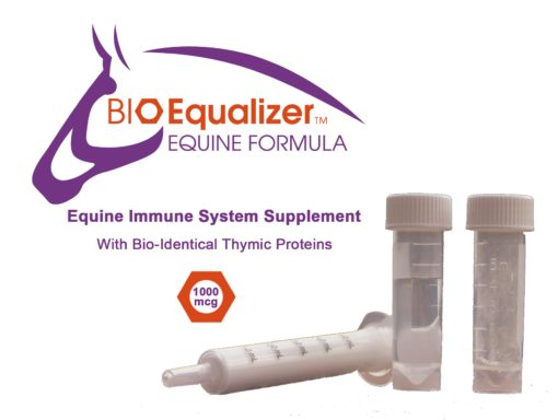 BioEqualizer The Best Horse Immune System Supplement