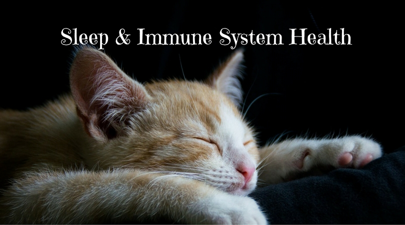 Sleep & Immune System Health – Are You Sleeping Enough?
