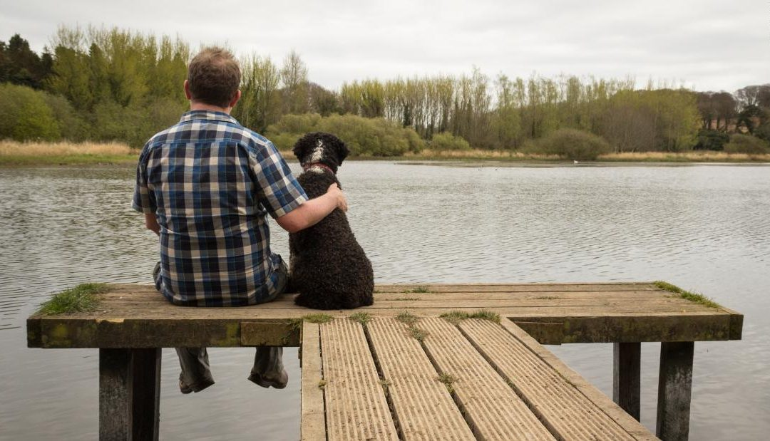 Dogs owners have a lower risk of mortality