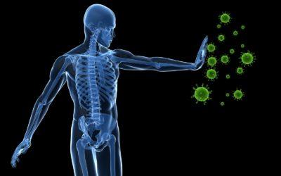 Immune related diseases