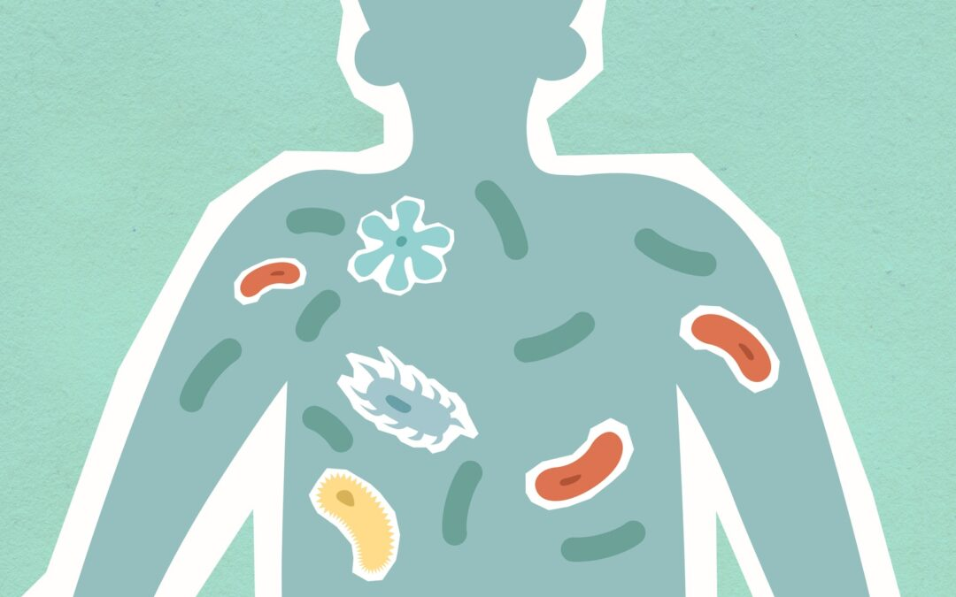 Healthy Virome: What Is The Role Of Good Bacteria And Viruses In Human Health