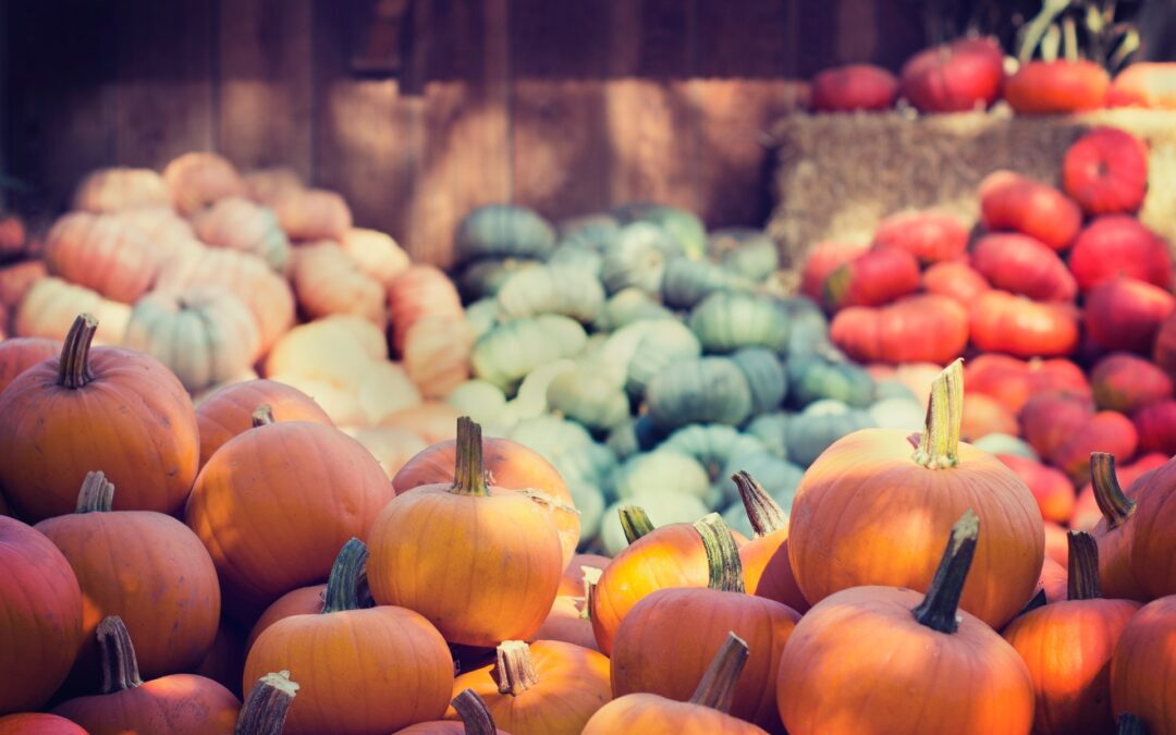 Fall in Love With Fall Foods: Healthy Produce Choices For a New Season