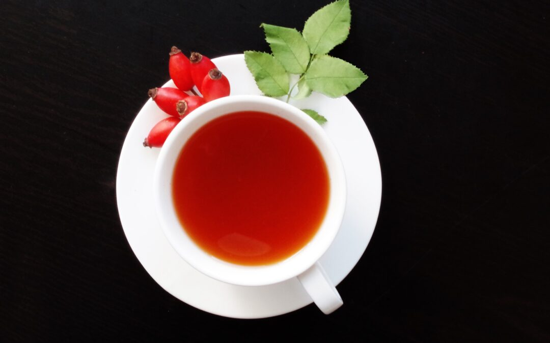 Medicinal Plants: Herbal Teas to Harvest, Dry and Enjoy This Autumn